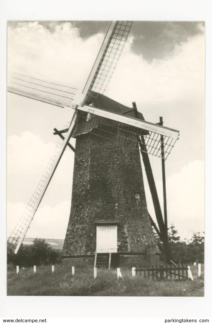 D138 - Arendonk - Molen Steendonker - Molen - Moulin - Mill - Mühle - Arendonk