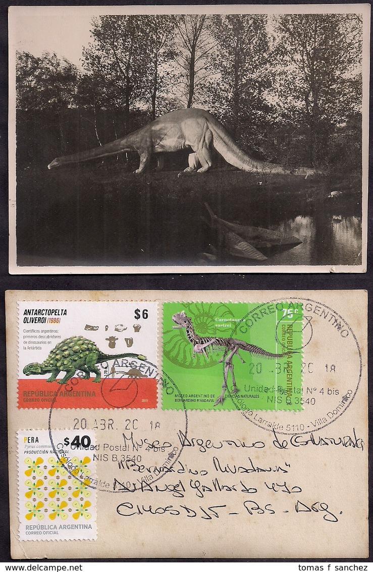 Argentina - 2018 - Lettre - Photo D'un Parc De Dinosaures Inconnu Distribué Au Musée De L'Argentine - Vor- U. Frühgeschichte