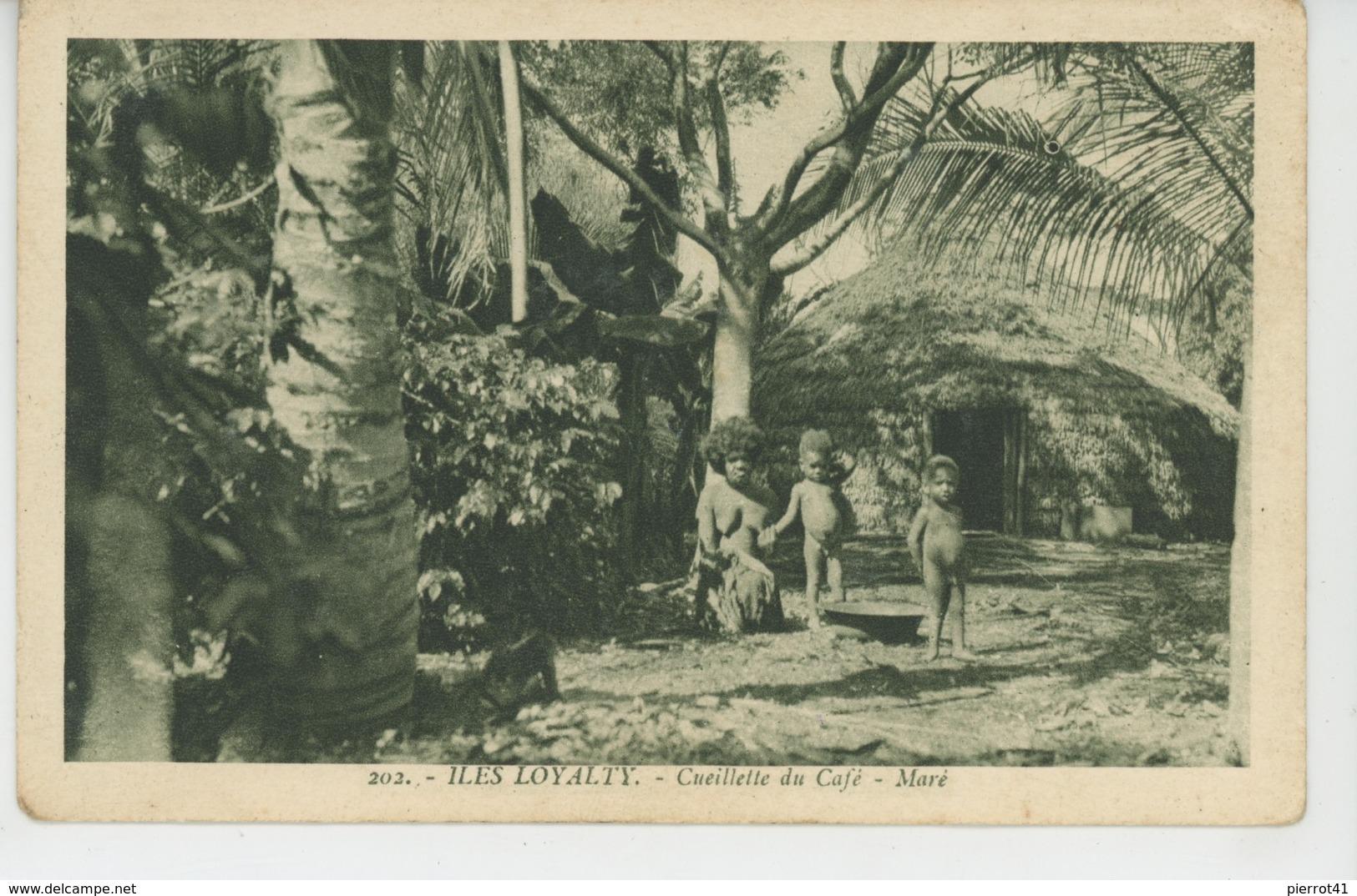 OCEANIE - NOUVELLE CALEDONIE - ILES LOYALTY - Cueillette Du Café - Maré (enfants Nus Et Femme - Naked Boys & Woman ) - Nuova Caledonia