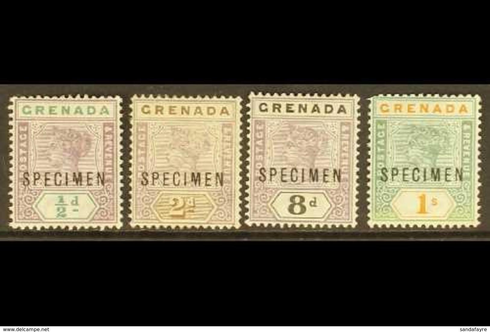 "1895-99 Key Plate ""SPECIMEN"" Overprints Showing Broken ""M"" (position 41), ½d, 2d (no Gum), 8d And 1s (thin), Scarce. (4  - Grenada (...-1974)"