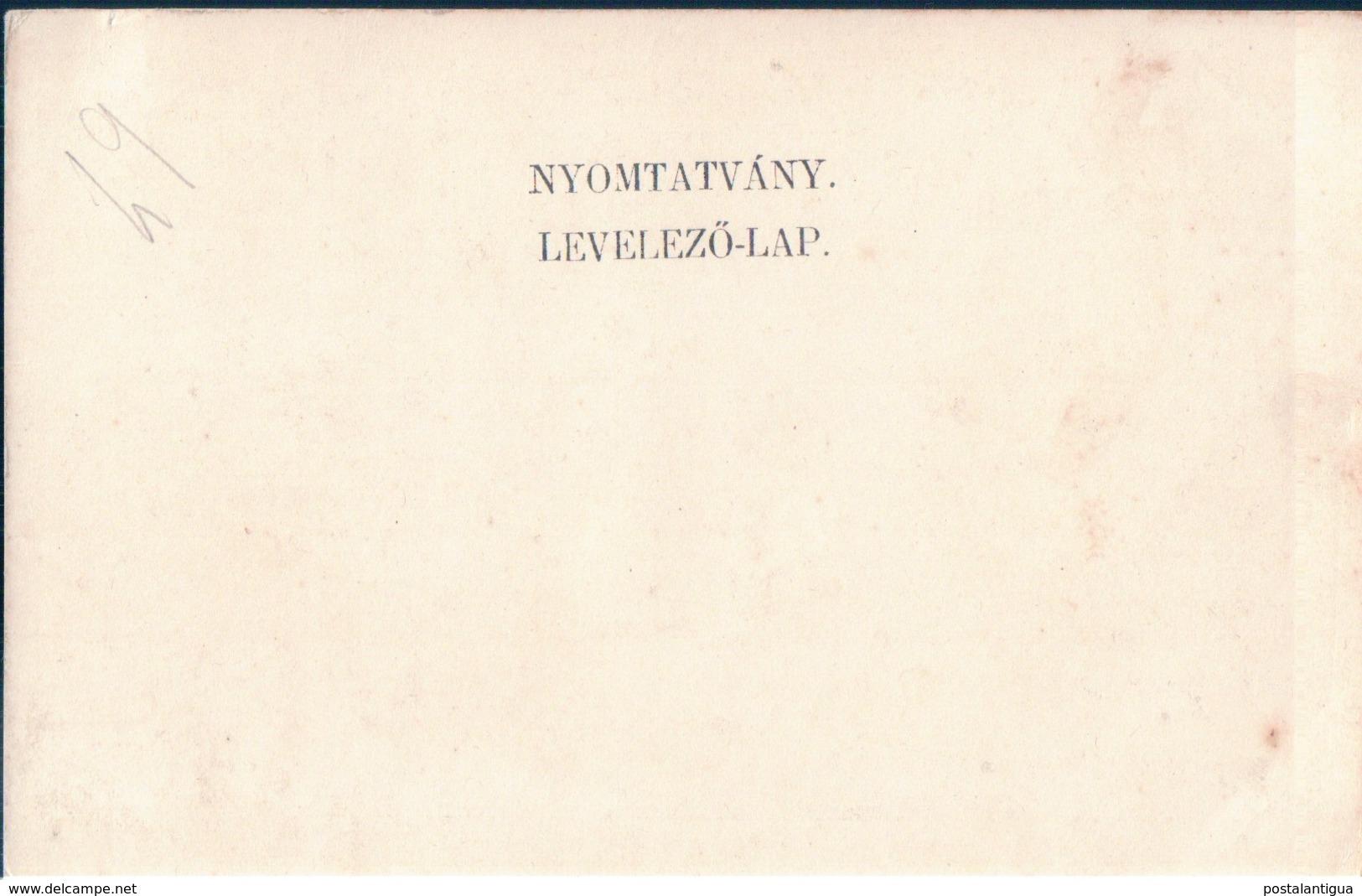 POSTAL HUNGRIA - NYOMTATVANY - LEVELEZO LAP - Hungría