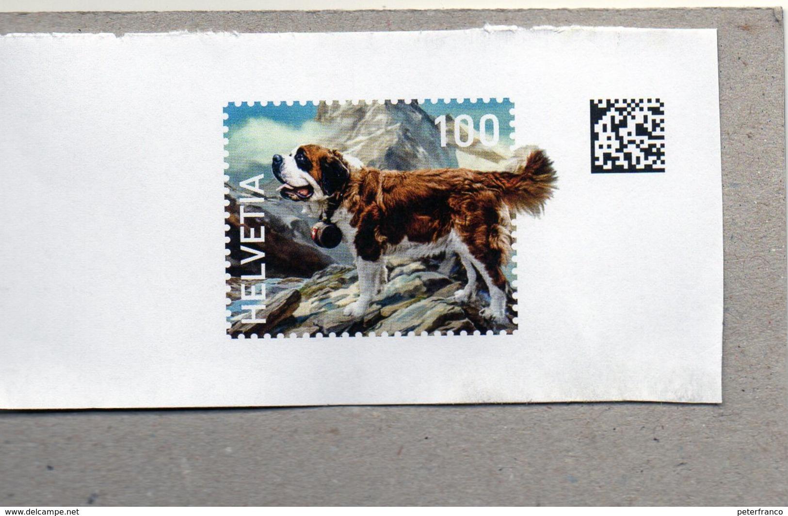 Svizzera - Webstamp - Cane San Bernardo (frammento) - Suiza
