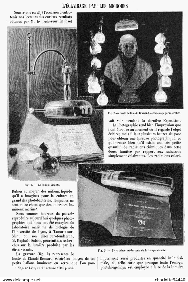 L'ECLAIRAGE Par Les MICROBES 1901 - Technical
