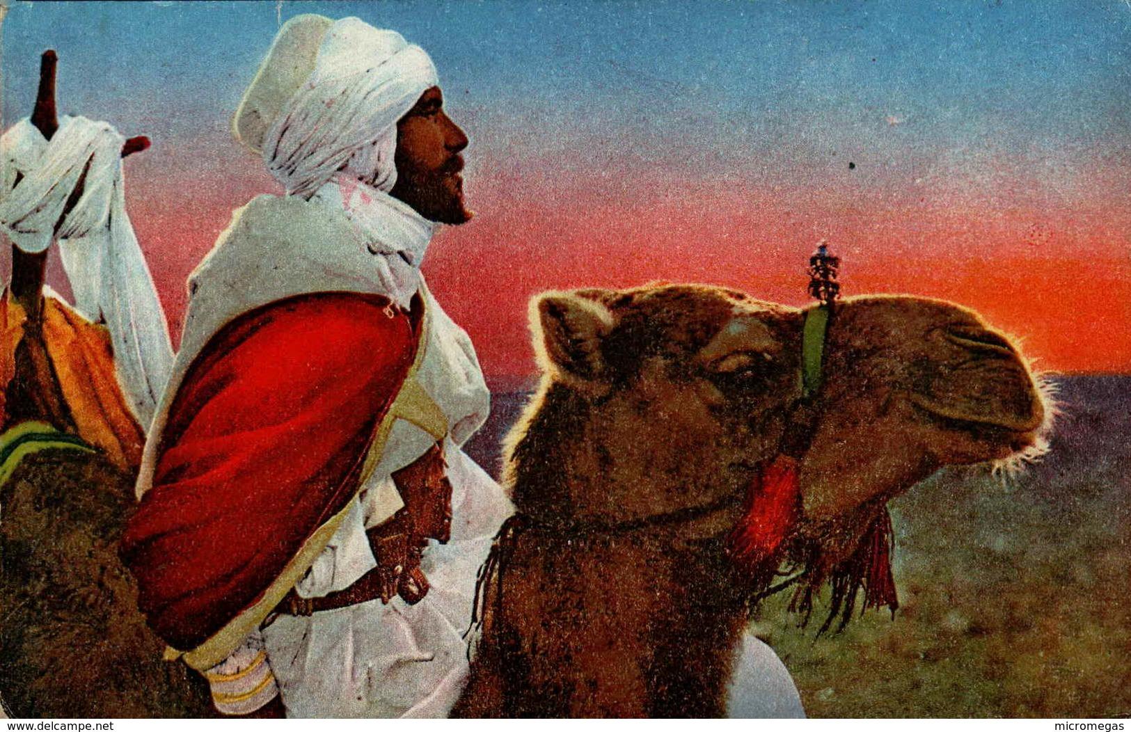 Arabe Du Sud - Scènes & Types