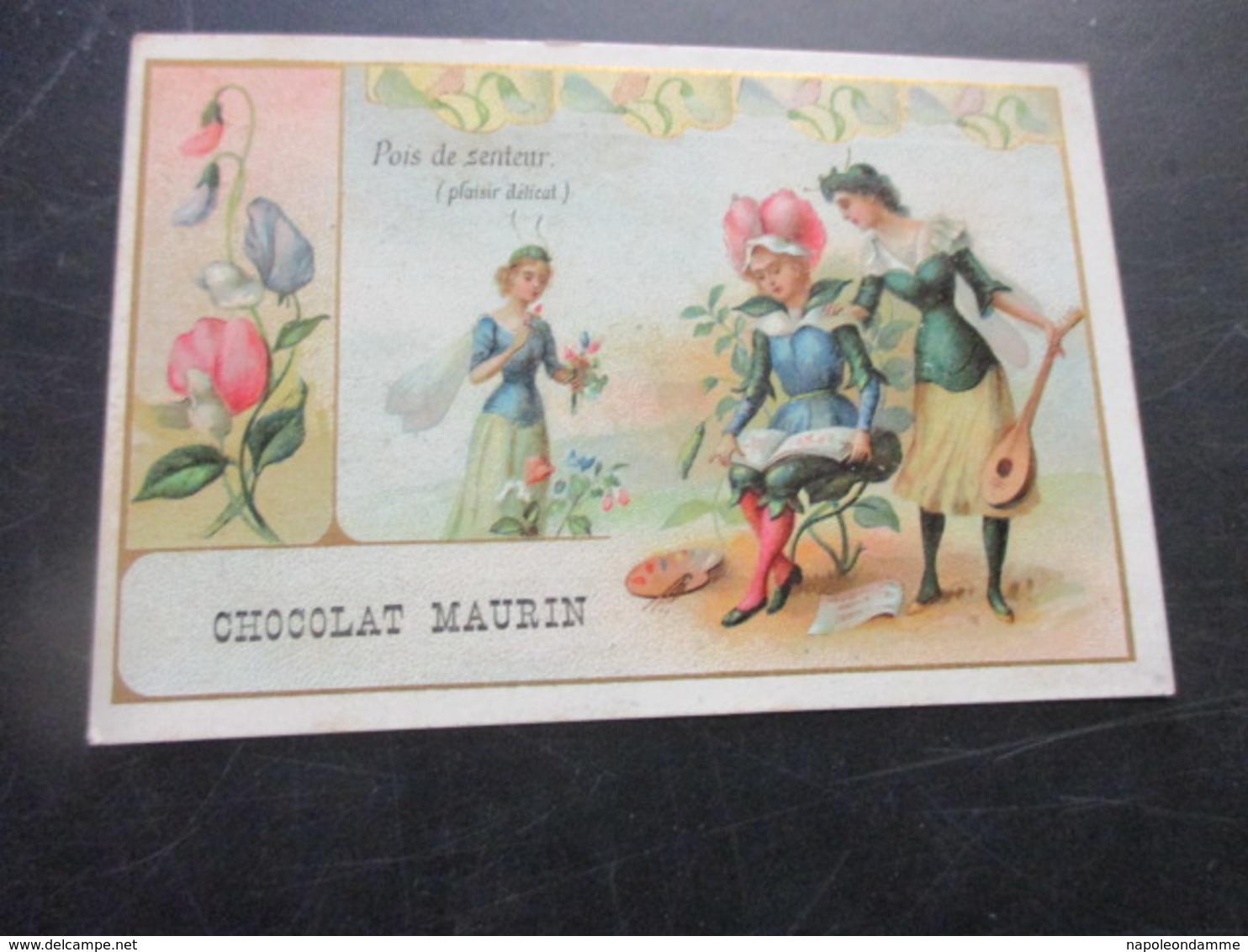 Chromo,Chocolat Maurin, - Unclassified