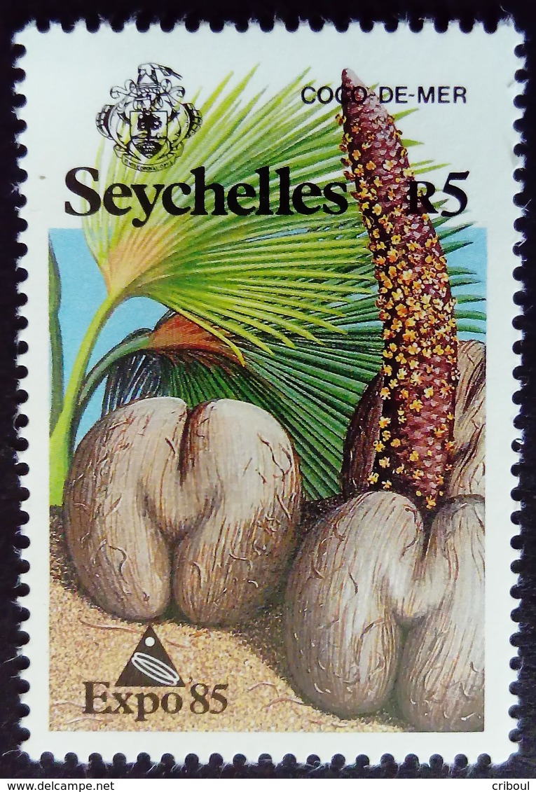 Seychelles 1983 Plante Plant Coco Fruit Yvert 572 ** MNH - Seychellen (1976-...)