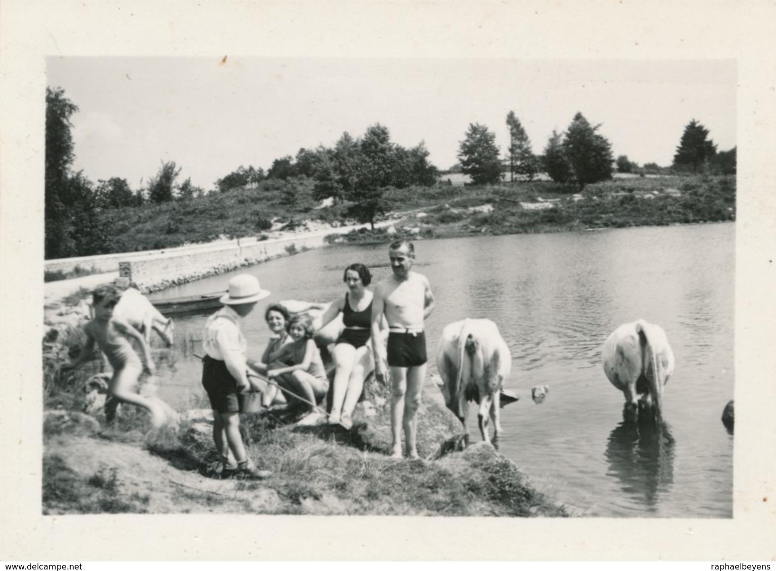 Snapshot Animée Morlaix Plage Vaches Maillots De Bain Swimming Suit Bretagne - Personnes Anonymes