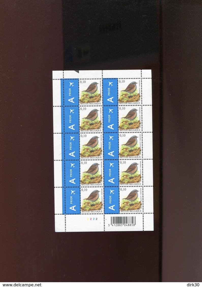 Belgie Buzin Vogels Birds Nr 3749 0.10€ Zwart Driehoekje Bovenaan RR Fulll Sheet MNH Plaatnummer 2 - 1985-.. Birds (Buzin)