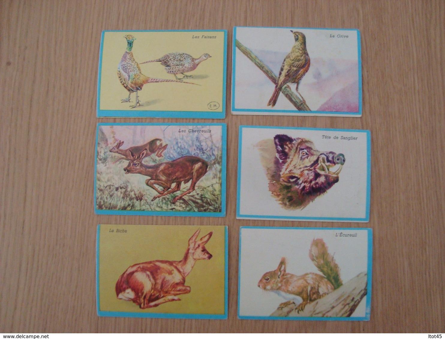 LOT DE 6 IMAGES BON-POINT SERIE EDUCATIVE SCIENCES NATURELLES - Kaufmanns- Und Zigarettenbilder