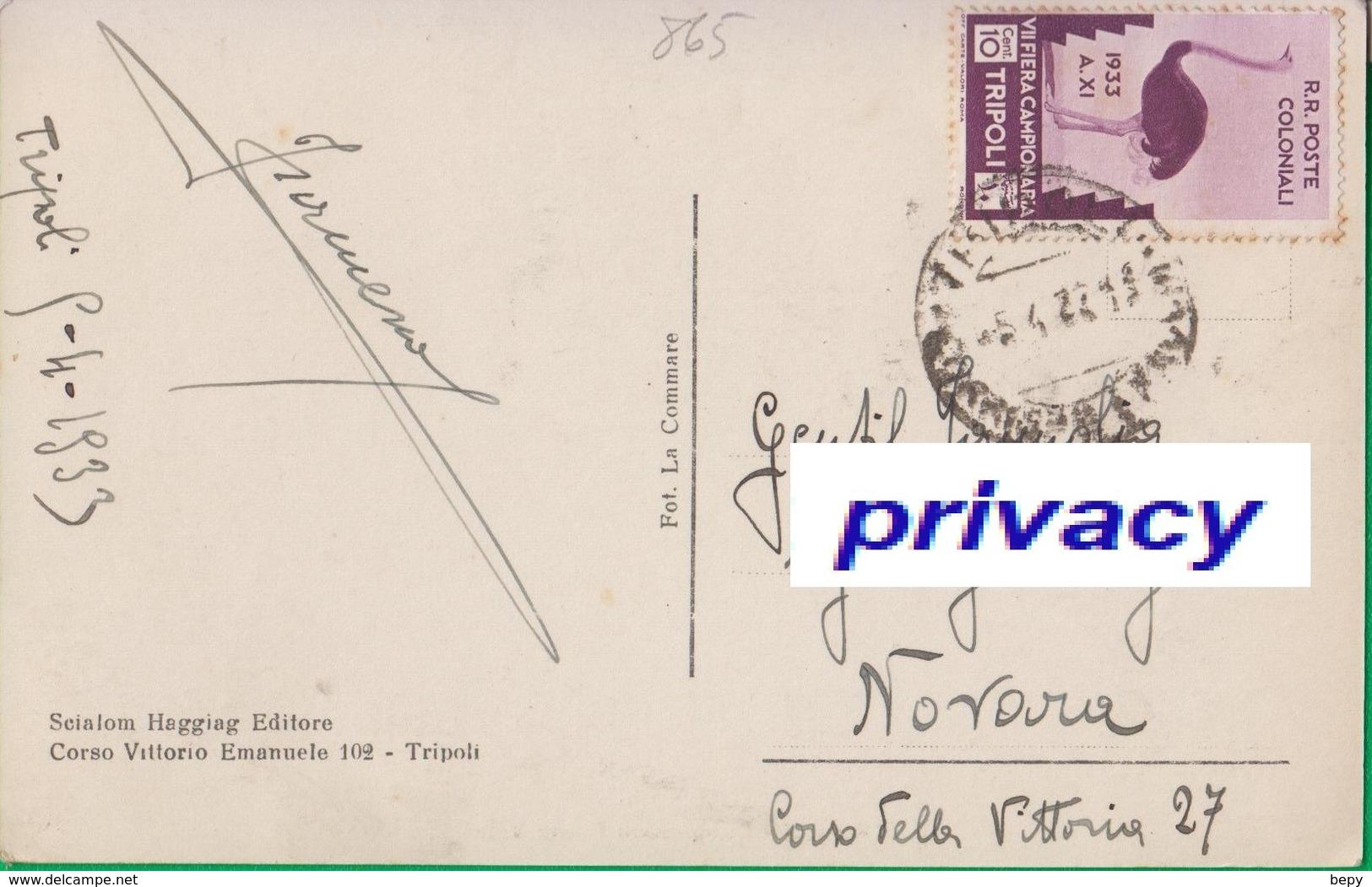 TRIPOLI. Cent. 10 Isolato Su Cartolina. Poste Coloniali. Colonie. Fiera Campionaria Di Tripoli.Struzzo.  865 - Libia