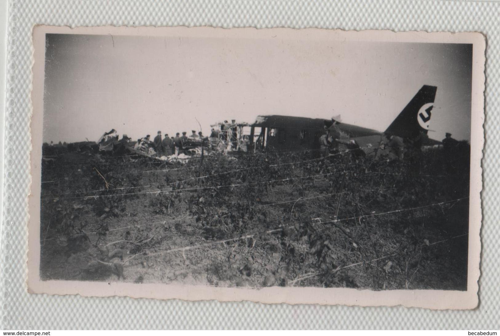 Photo Originale Avion Allemand Abattu 1941 1942  Tunisie  à Identifier - Aviation