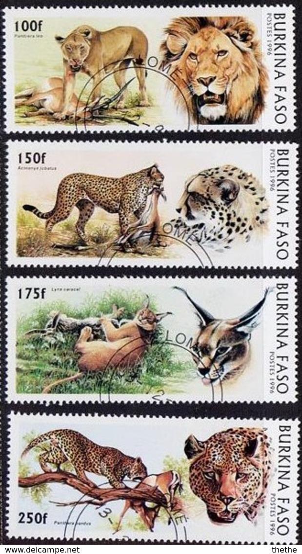 BURKINA FASO - Félins - Felinos