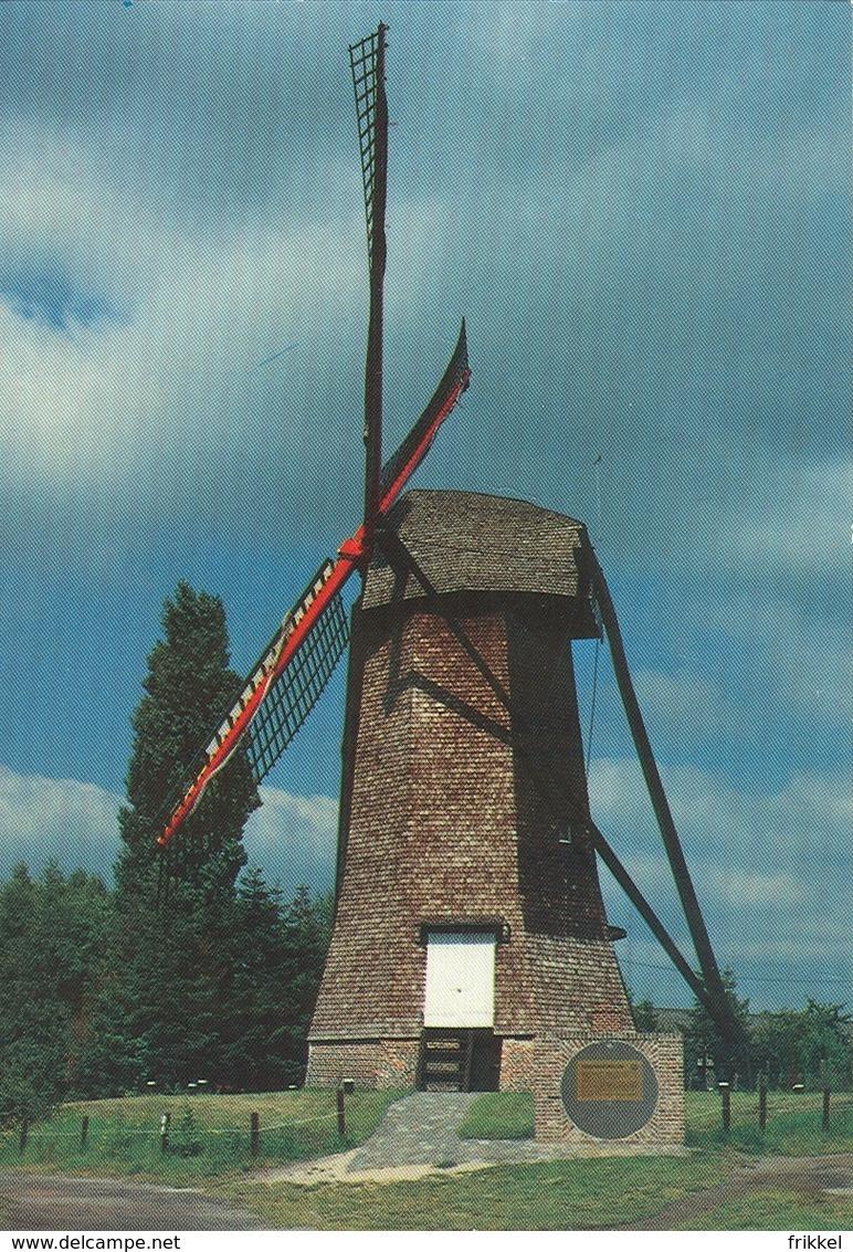 Arendonk Arendonck Toremansmolen Molen Moulin - Arendonk