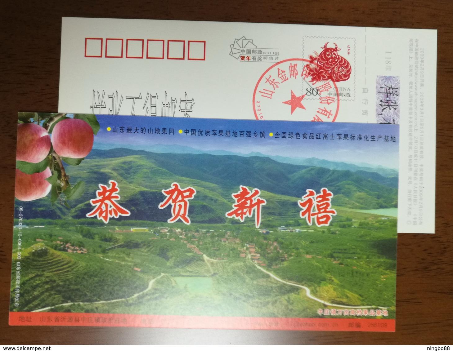 Red Fuji Apple,CN09 Zhongzhuang Town Ten Thousands Mu High Quality Fruit Base Pre-stamped Card,specimen Overprinted - Frutas