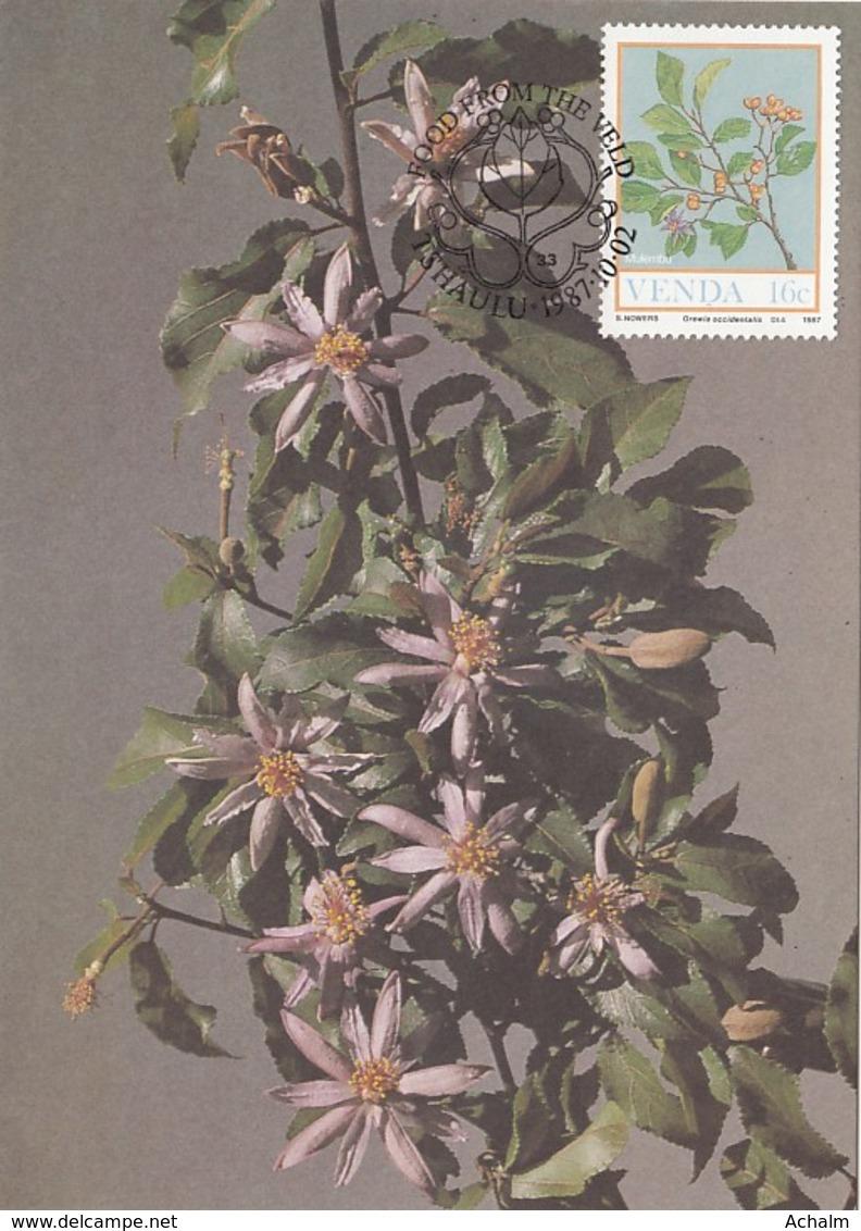 Venda - Maximum Card Of 1987 - MiNr. 163 - Field Crops - Crewia Occidentalis - Venda