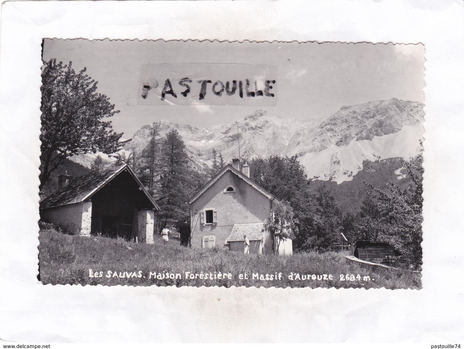 Carte Photo : 14 X 9   -  Les  SAUVAS  -  Maison  Forestière Et Massif D' Aurouze - France