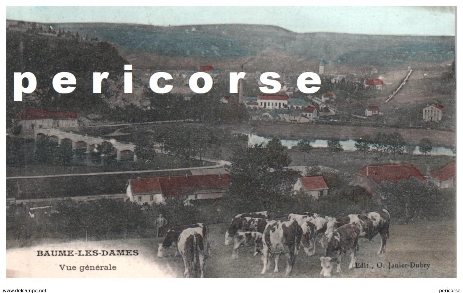 38   Baume Les Dames  Troupeau De Vaches Et Vue Générale - Autres Communes