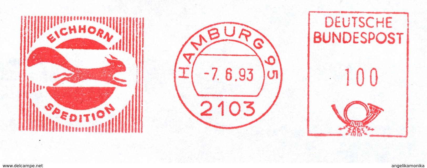 Freistempel 5113 Eichhörnchen - BRD