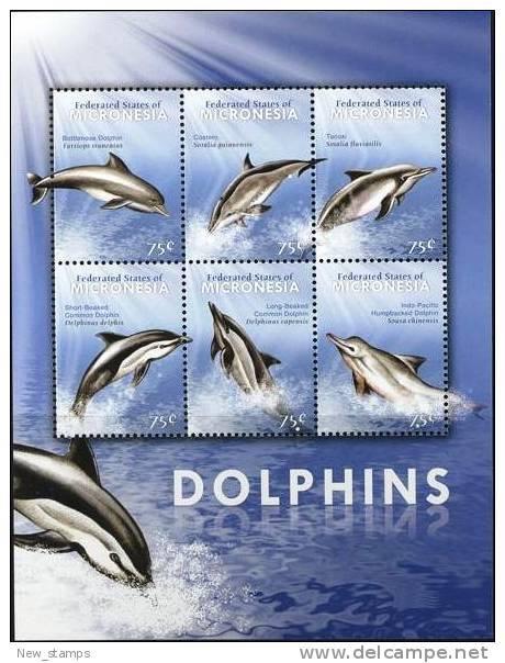 Micronesia 2009 Dolphins Minisheet Of 6v MNH - Micronesia
