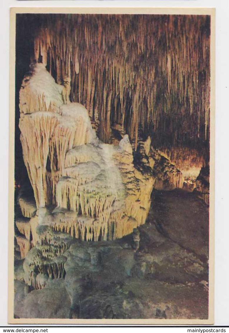 AI79 Cuevas Del Drach, Detalle - Mallorca