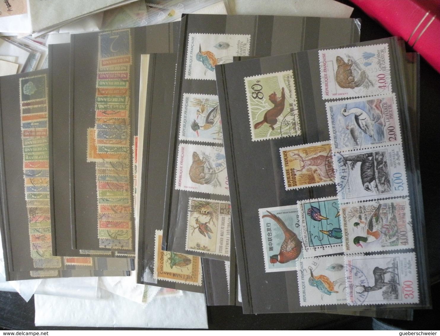 Carton De 2,5 Kg De Timbres En Pochettes Triés Par Pays Et Thèmes Soit Des Milliers De Timbres Avec Classeur - Collections (without Album)