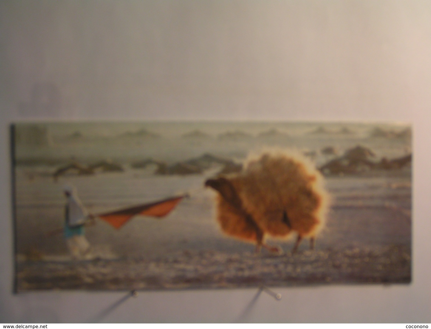 Un Homme Avec Son Chameau Dans Le Désert - 190 Mm X 80 Mm - Afghanistan