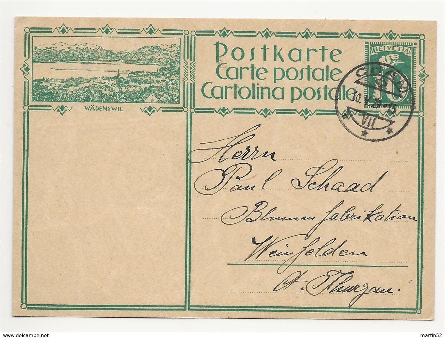 """Schweiz Suisse 1929: Bild-PK / CPI """"WÄDENSWIL""""  Mit Stempel CHAM 10.V.29 Nach Weinfelden - Interi Postali"""