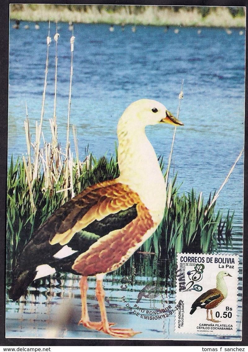 Bolivia - 2002 - Carte Maximun - Pato Roncador - Entenvögel