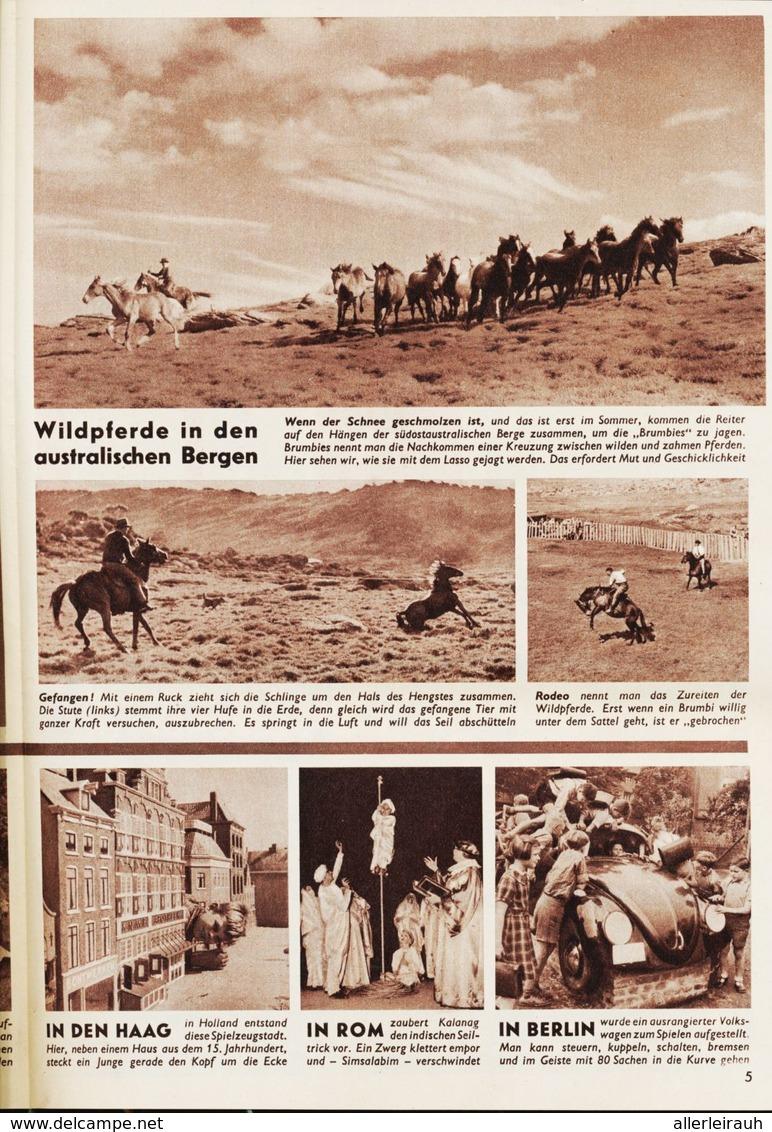 Das Sternchen /  Beilage Zum Stern Nr.29 Vom 19.Juli 1953 - Bücher, Zeitschriften, Comics
