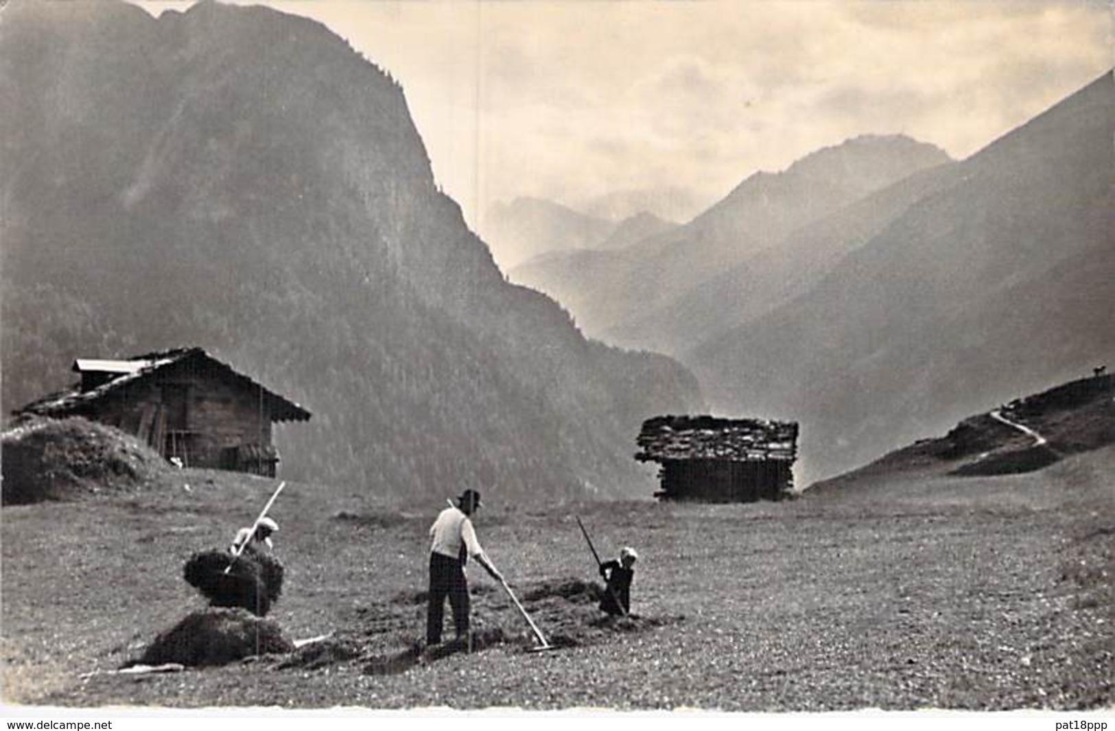 SUISSE Swiss ( VS Valais ) Les Foins à La FORCLAZ - CPSM Dentelée Photo Noir Et Blanc - Agriculture Paysans Moissons - VS Valais