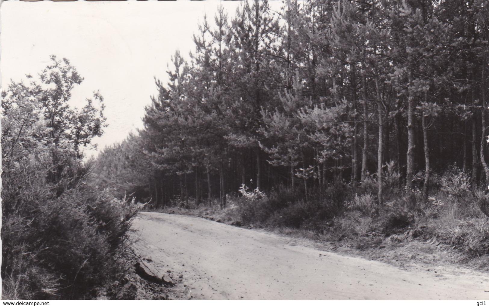 Herslt - Oude Heirbaan - Herselt