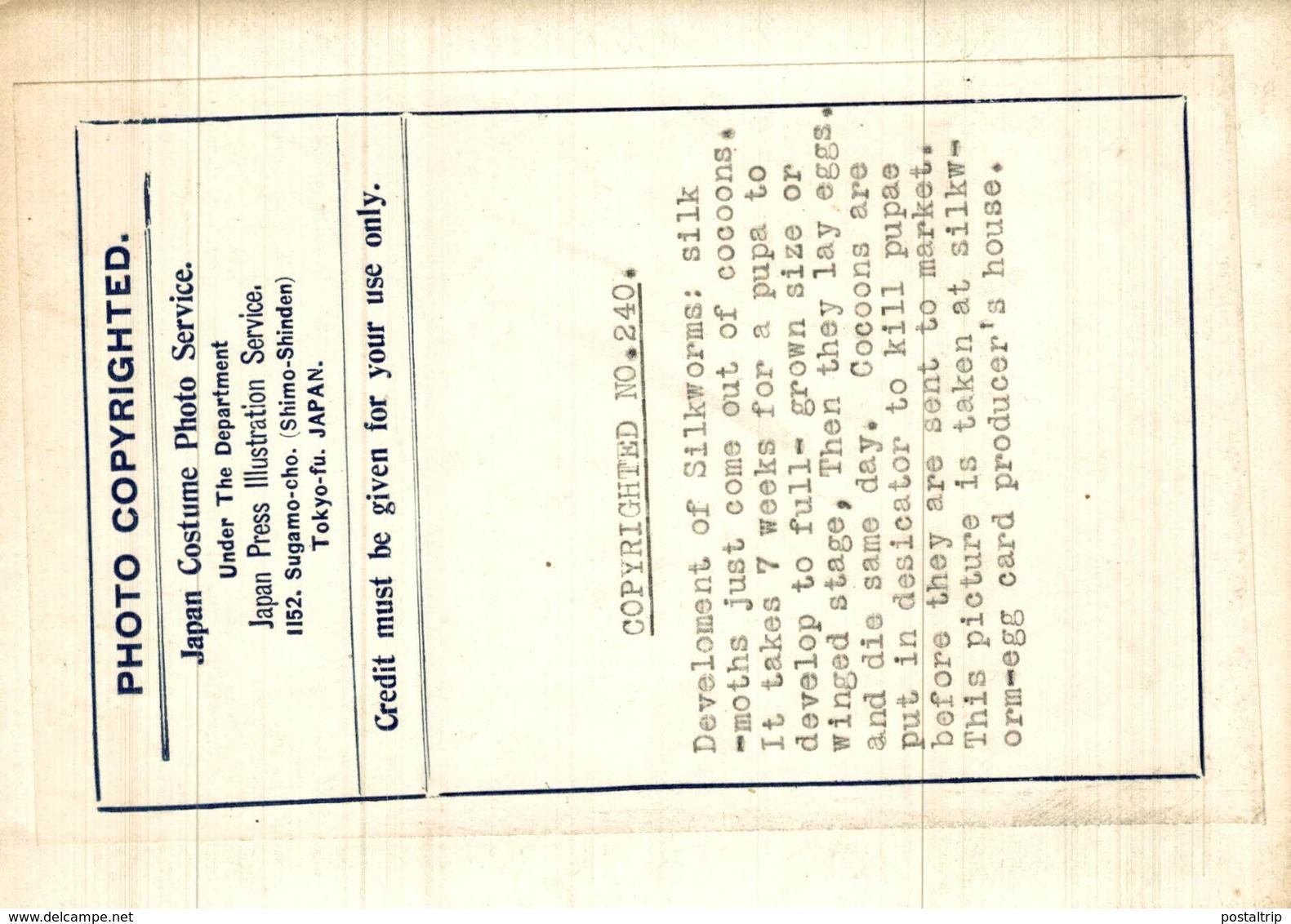 DEVELOPMENT SILKWORMS  SEDA  JAPAN JAPON  16*12CM Fonds Victor FORBIN 1864-1947 - Profesiones