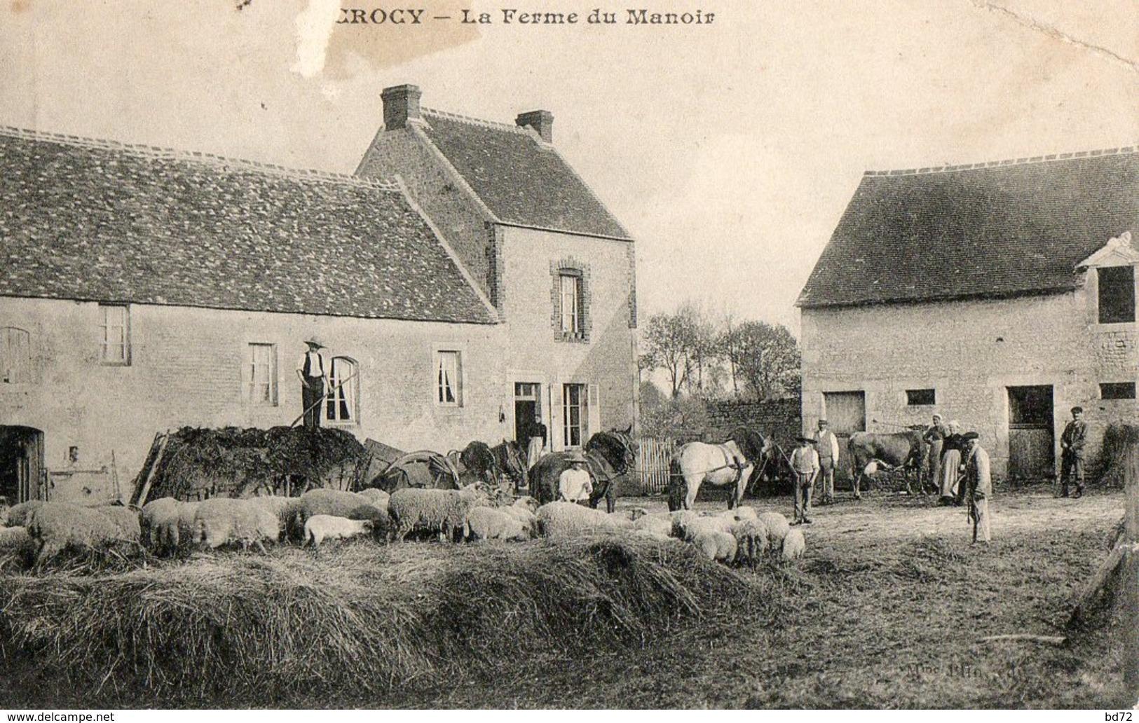 CROCY   ( 14 ) - La Ferme Du Manoir - France