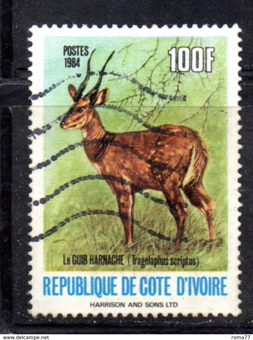 APR2181 - COTE COSTA D'AVORIO 1984 ,  Yvert N. 701A  Usato  (2380A)  Guib - Costa D'Avorio (1960-...)