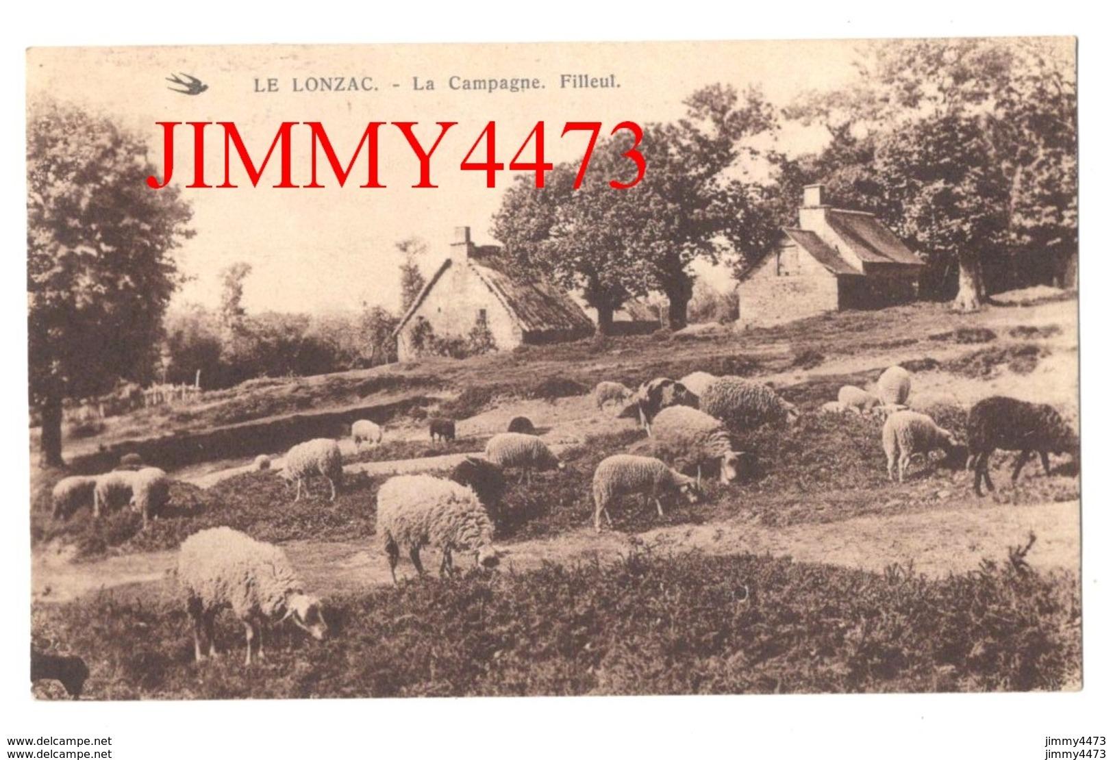 CPA - LE LONZAC - Troupeau De Moutons Au Pâturage ( Arr. De Tulle ) 19 Corrèze - La Campagne. Filleul - Edit. La Mouette - Tulle
