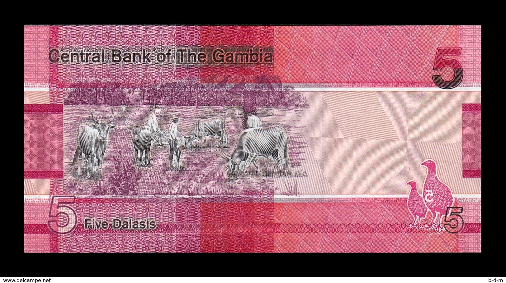 Gambia Lot Bundle 10 Banknotes 5 Dalasis 2019 Pick New SC UNC - Gambia