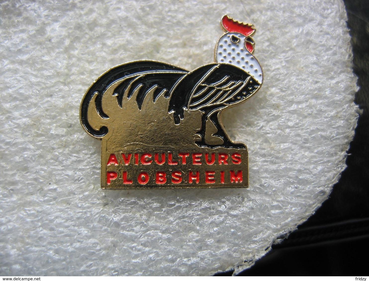 Pin's Des Aviculteurs De PLOBSHEIM Dans Le Bas-Rhin - Animaux