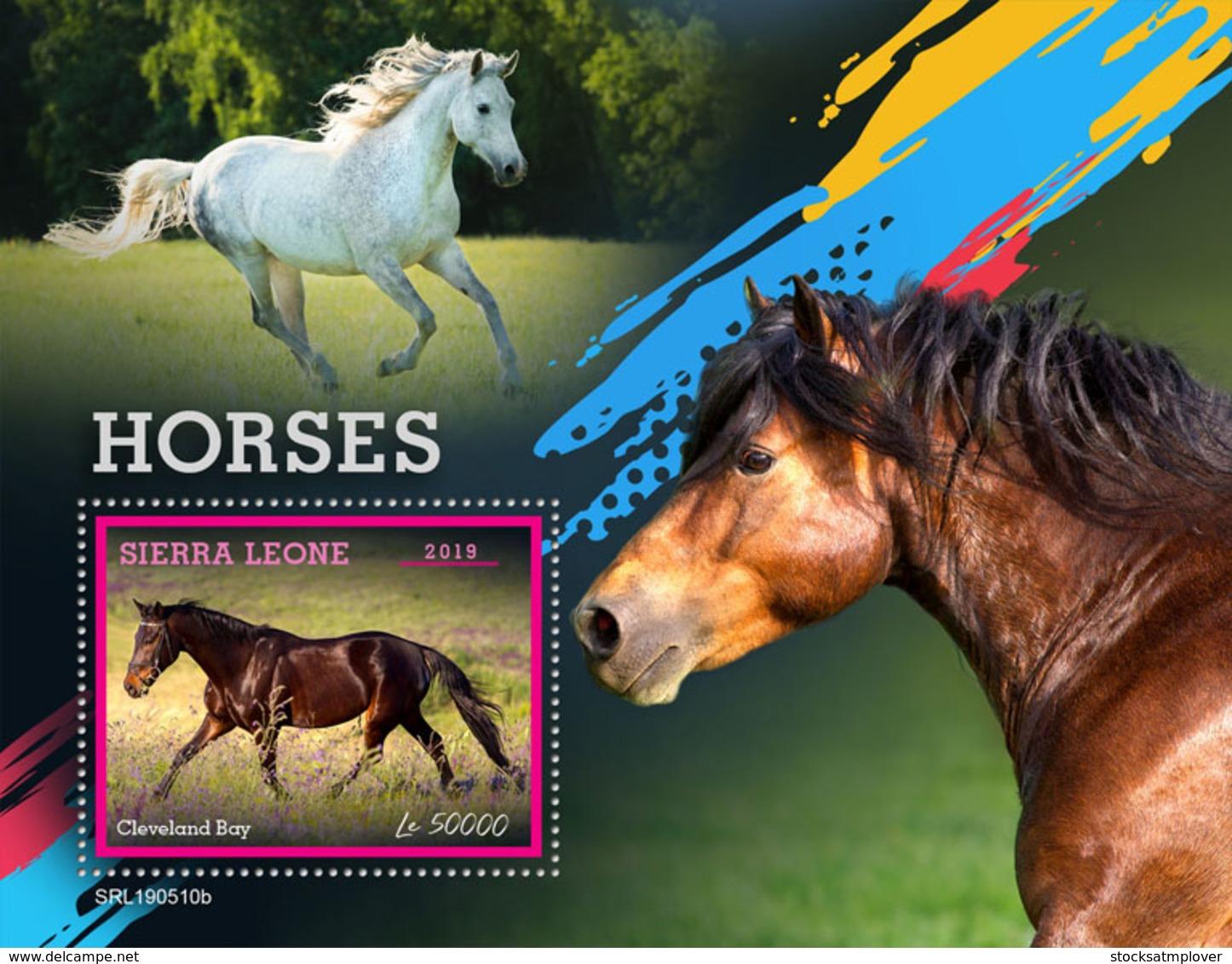 Sierra Leone 2019 Fauna   Horses S201907 - Sierra Leone (1961-...)