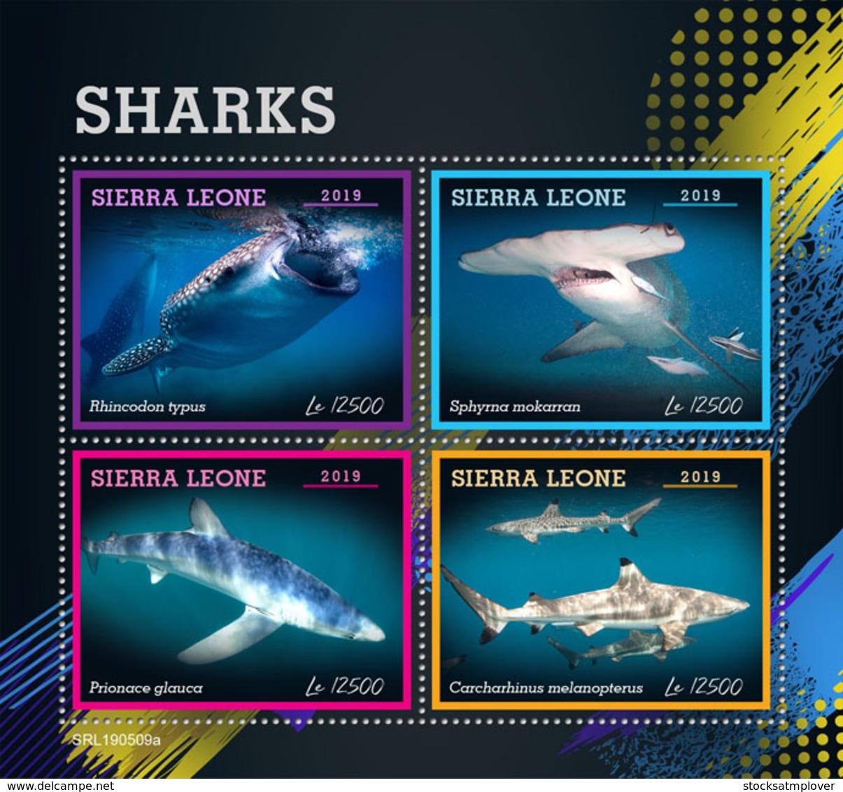 Sierra Leone 2019 Fauna  Sharks  S201907 - Sierra Leone (1961-...)