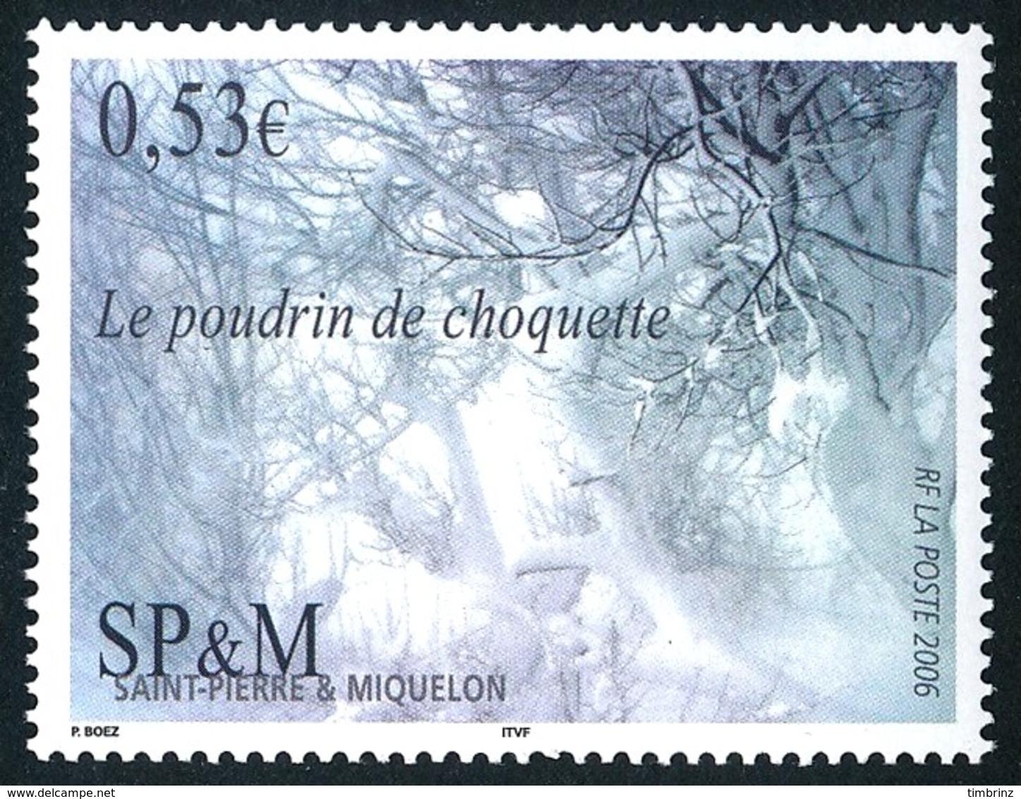 ST-PIERRE ET MIQUELON 2006 - Yv. 860 **   Faciale= 0,53 EUR - Le Poudrin De Choquette  ..Réf.SPM11562 - Neufs