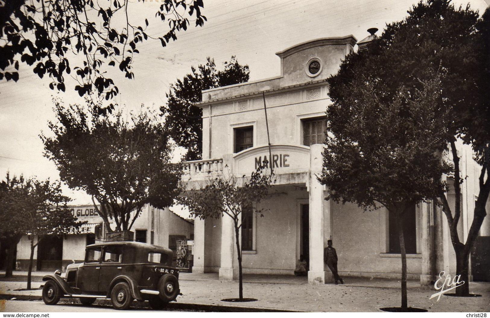ALGERIE CHATEAUDUN-DU-RHUMEL La Mairie - Autres