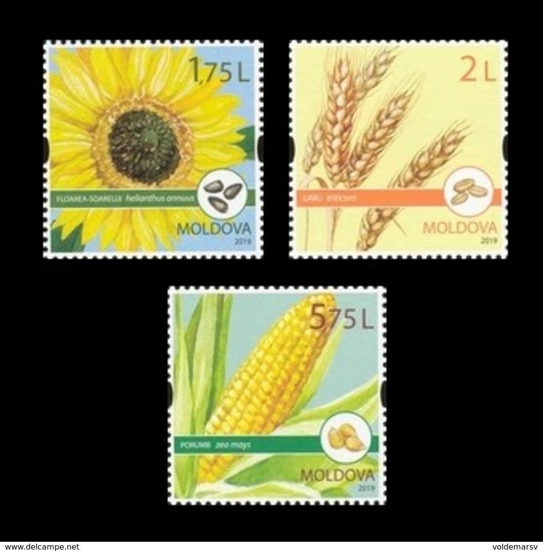 Moldova 2019 Mih. 1113/15 Flora. Field Crops MNH ** - Moldova
