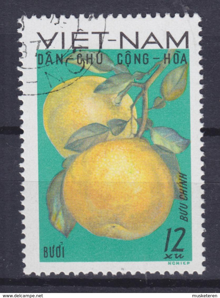 Vietnam 1969 Mi. 588    12 (xu) Frücht Fruit Pampalmuse (Citrus Maxima) - Vietnam