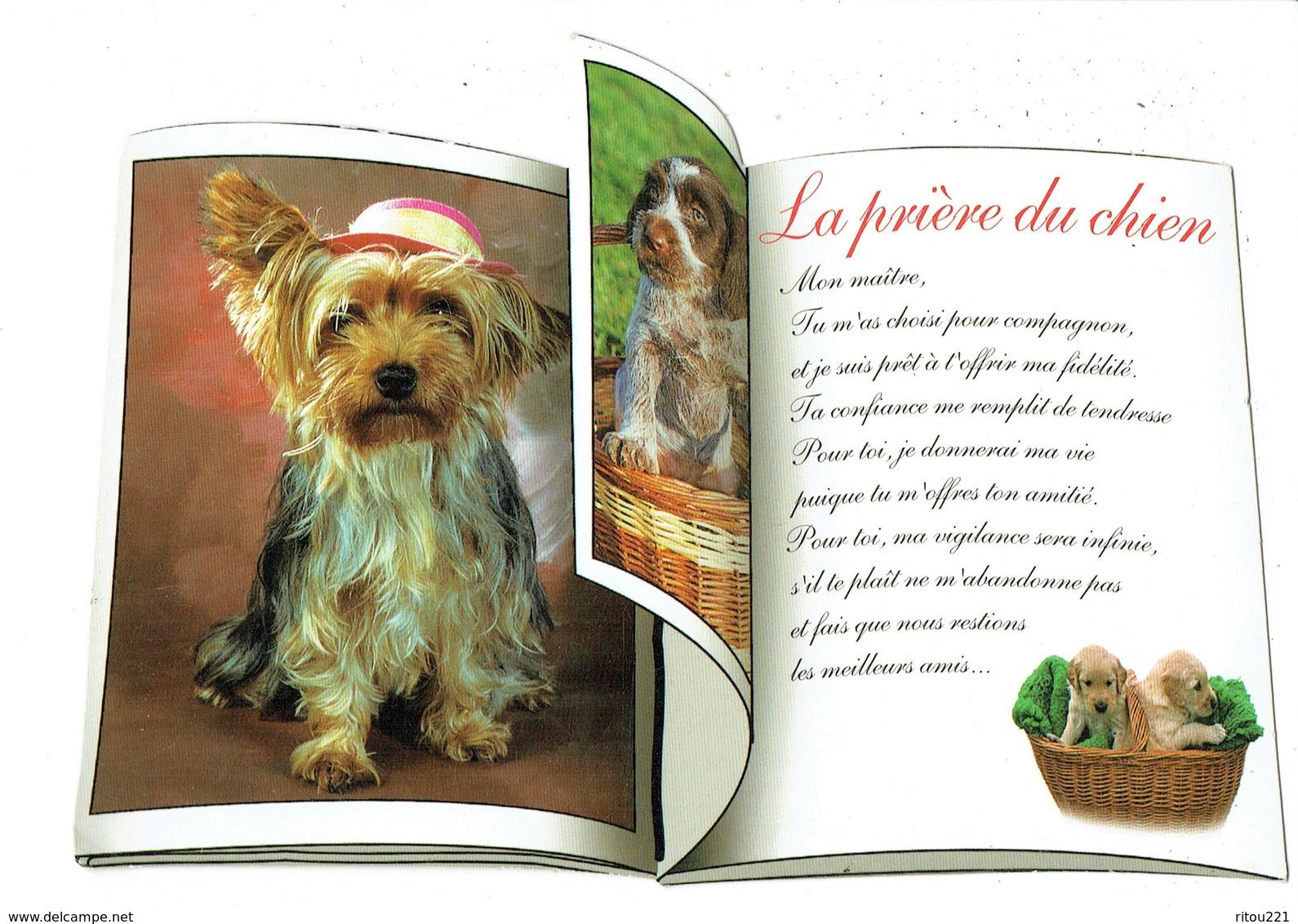 Cpm - La Prière Du Chien - Livre Ouvert - Labrador - Photos Willy's - Edit Valoire - Hunde