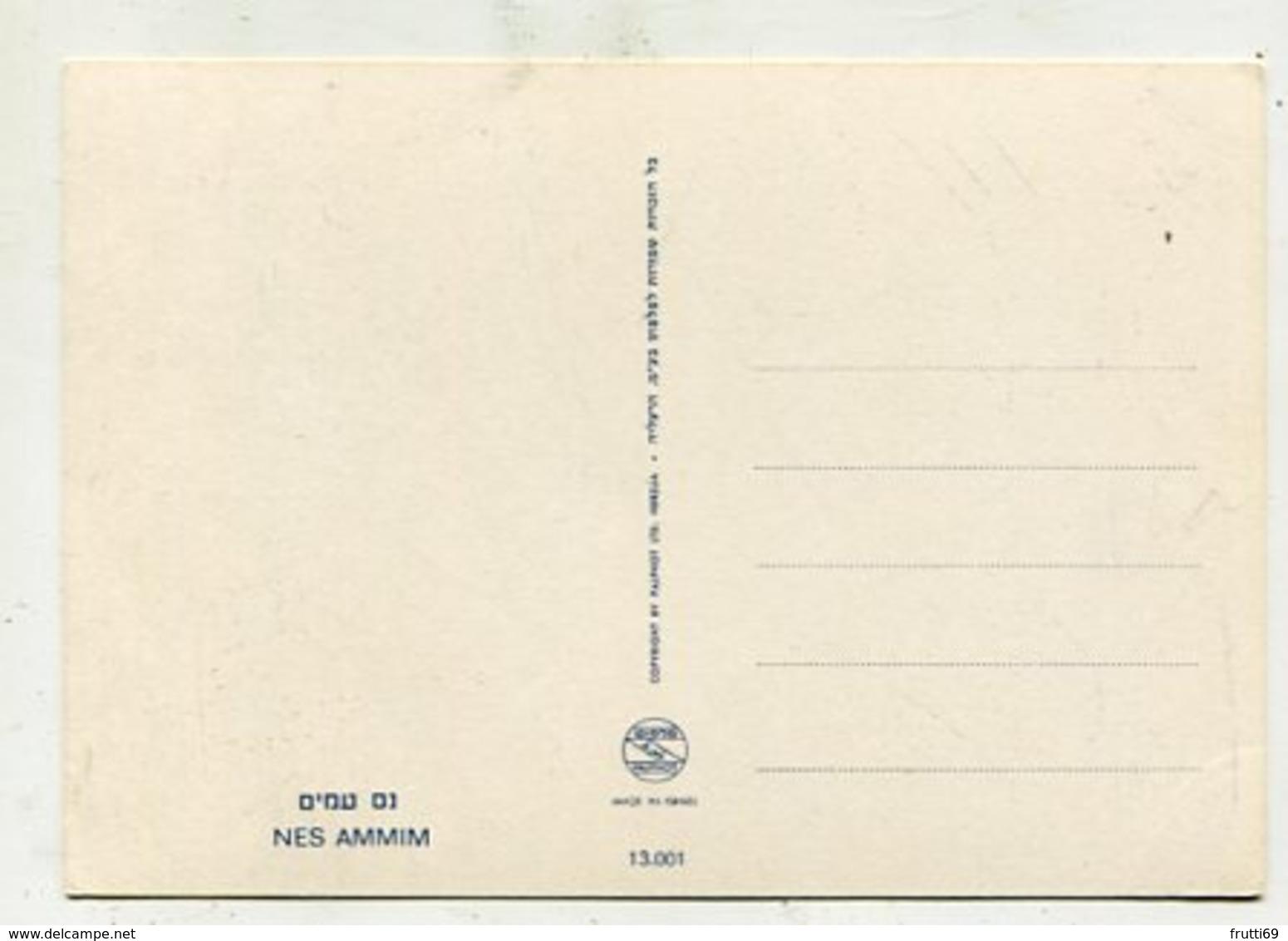 ISRAEL - AK 360620 Nes Ammim - Israël