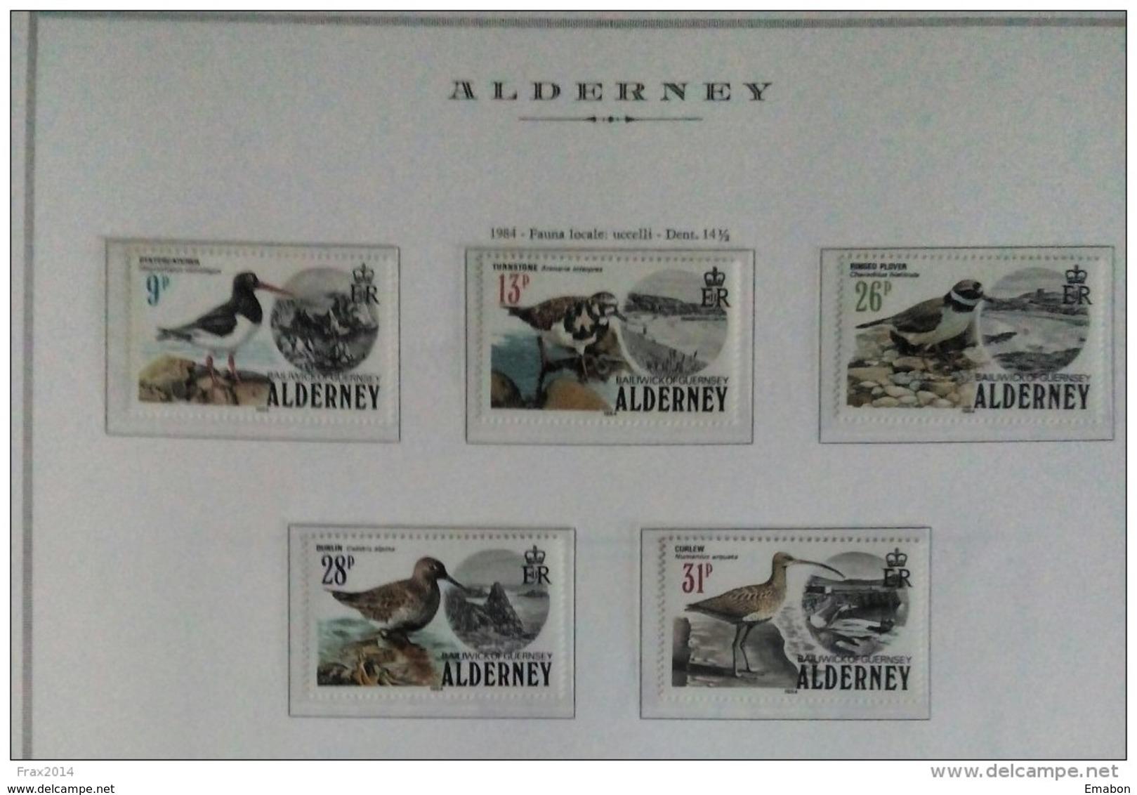 ALDERNEY  ANNO  1983 - FAUNA LOCALE UCCELLI  -  NUOVI MNH ** - Alderney