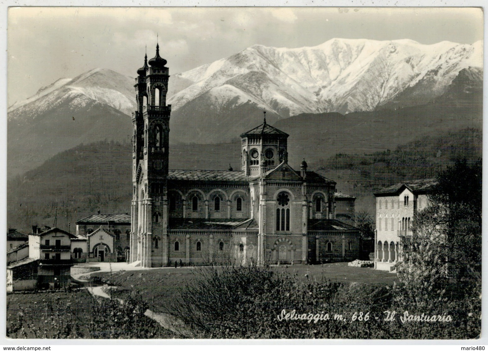 SELVAGGIO     (TO)               (VIAGGIATA) - Italia