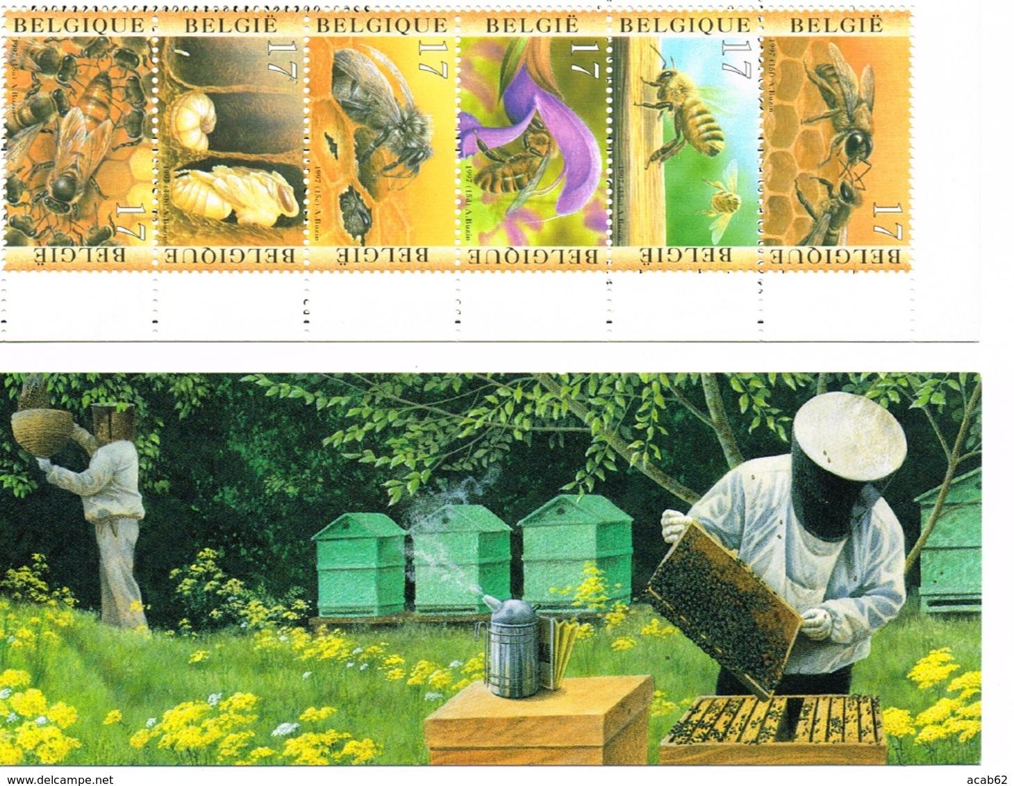 Belgique. Carnet Apiculture. Ruche. Abeille. Essaim. Apiculteur. - Honeybees