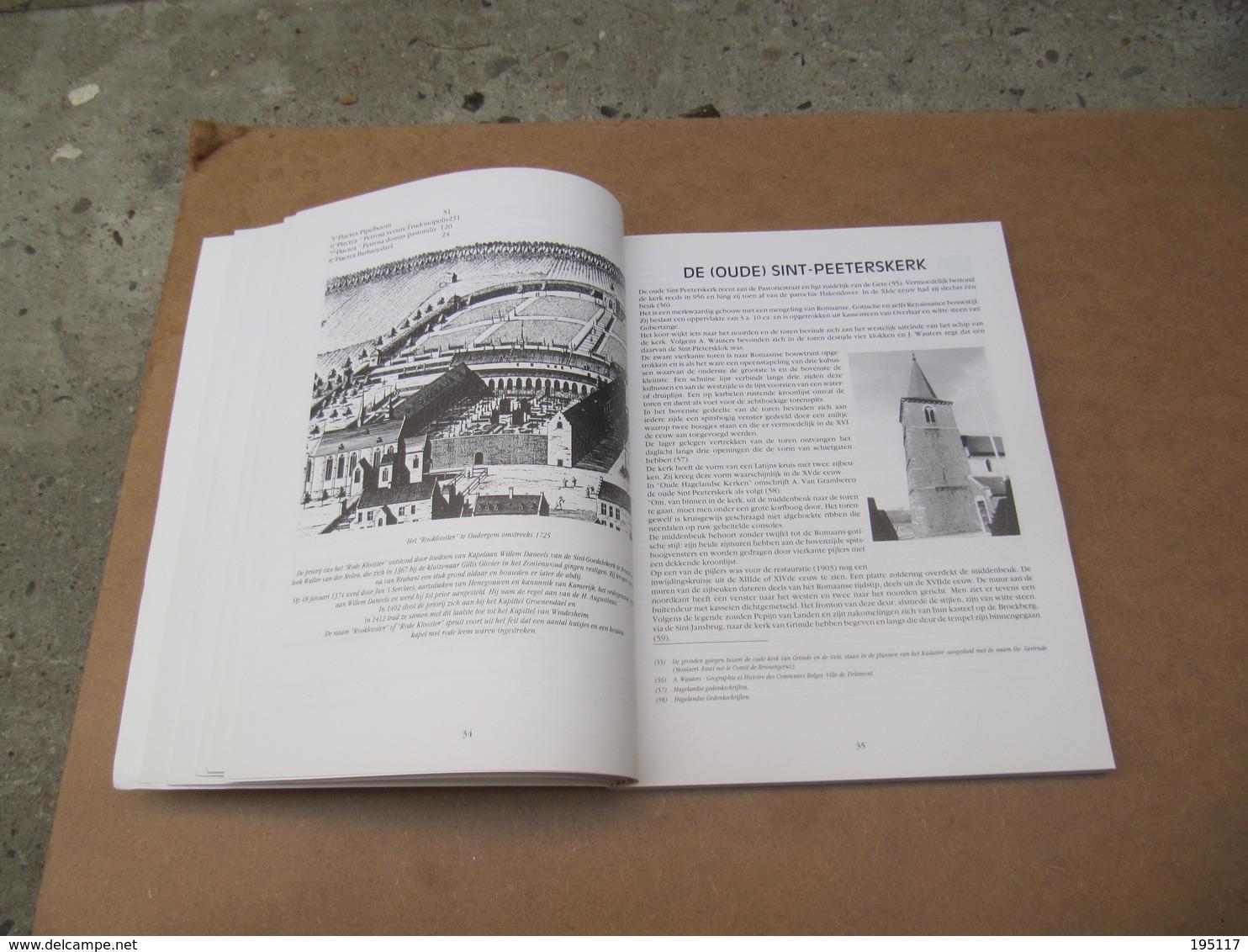 Tienen - Boek - De Hanemannen Van Grimde - 1995 - 227 Pagina's - Tienen