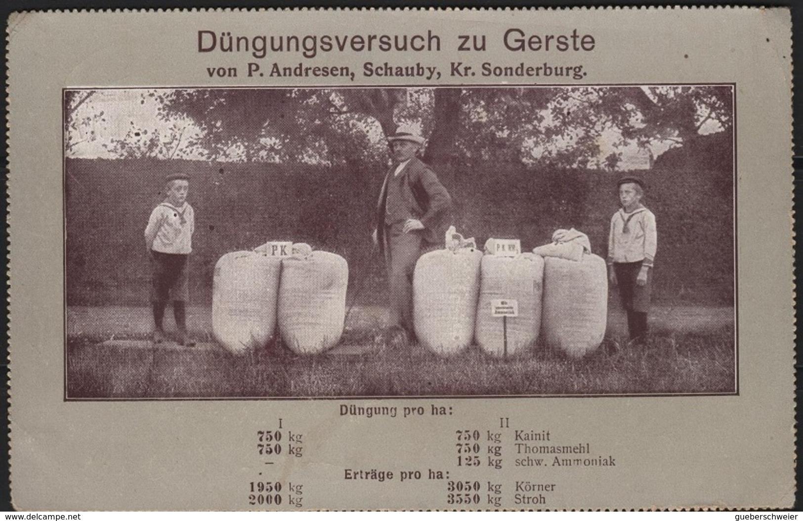THEA-L46 - ALLEMAGNE Carte Postale Publicitaire Expédiée Par Feldpost 1915 - Occupation 1914-18